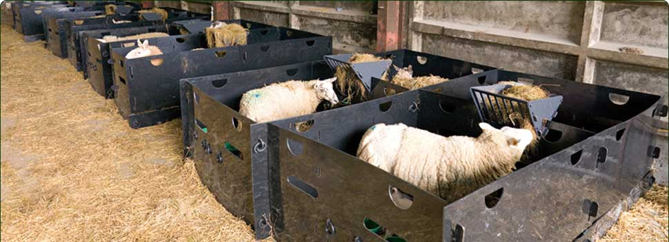 how to build lambing pens