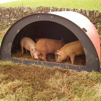 8ft By 4ft Pig Ark Solway Products Pig Ark Plastic Pig Ark