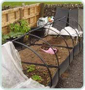 Deluxe Raised Beds In A Row With Frames