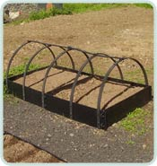 Standard Raised Bed In a Row with Frame