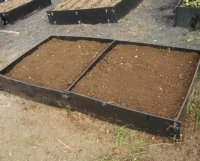 small standard raised beds in a row