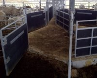 recycled plastic calf pen plastic sheeting