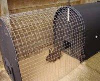 recycled plastic deluxe eco rabbit hutch