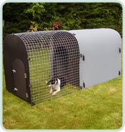 Monster Dog Kennel