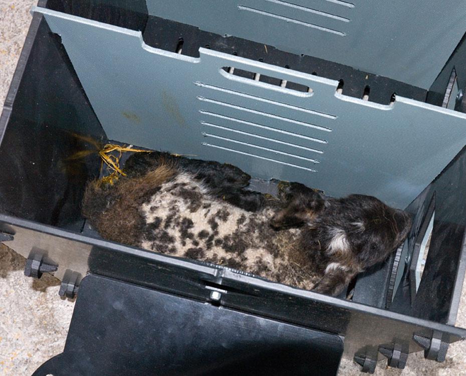 Solway Products Solway Lamb Warming Box