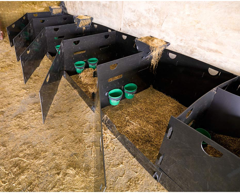 Lambing Pens For Sale Deluxe Sheep Pens In A Row Solway Recycling