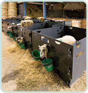 View our range of Lamb Adopter Fronts