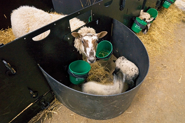 lambing time with solway recycling