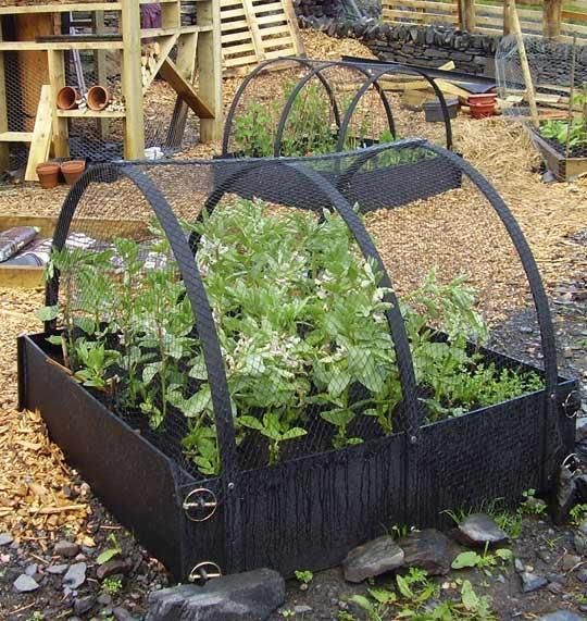 raised beds for sale gift